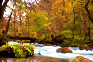 12476328 - autumn colors of oirase river, located at aomori prefecture japan