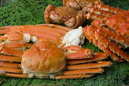 【カニバイキング5選!】北海道の味覚の王様カニ!東京都内で食べれるお店