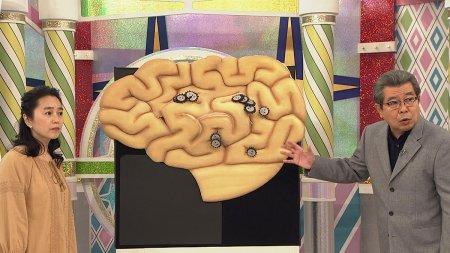 ためしてガッテン「認知症予防SP」