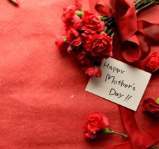 27047467 - red carnations bouquet with message card