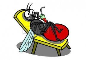 26128097-リラックスした蚊