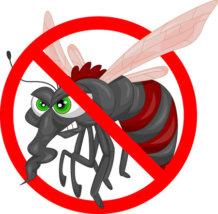 33199276 - mosquito cartoon