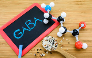41725828 - gaba molecule is important neurotransmitter  in the mammalian central nervous system