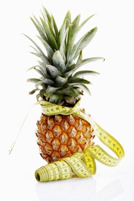 酵素はさまざまな栄養素の基盤